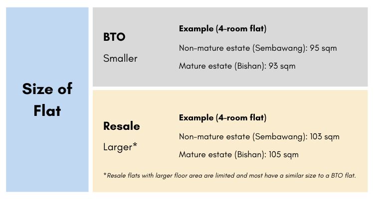 Size of the flat infographic